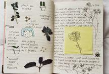 садово-кухонные книги