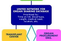Donation and Transplantation Education