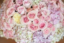 Pastel Palette | Haute Color / by A Good Affair Wedding & Event Production