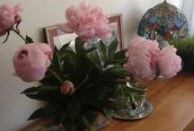 Flores Y Ambientes Florales
