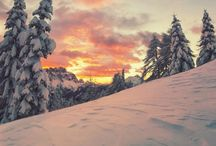 Winter ❄️⛄️