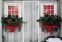 Window box / Natale