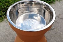 Home, Sweet Home / Home accessories and furniture that every dog's home needs