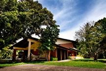 Safari's headquarters