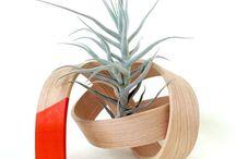 CelerySpace products