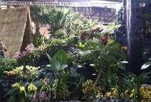 Philadelphia International Flower Show