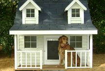 Unique Dog house / All sorts of dog houses