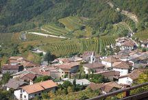 Savignano Vallagarina Trentino / Savignano Vallagarina Trentino
