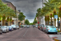 Orlando / by Jennifer Graddy