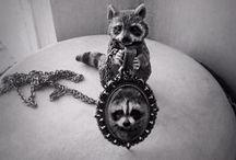 Raccoon ❤️ / All about raccoons. Всё о енотах.