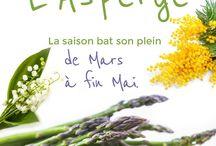 L'asperge des chefs / Dossier thématique du mois, l'asperge !