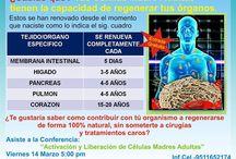 LILIANA / ÚNICO LIBERADOR DE CÉLULAS MADRE ADULTAS 100% NATURAL PATENTADO Y COMPROBADO CIENTIFICAMENTE. TE INTERESA CONTACTAME  cel.9511652174
