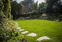 Green Grass the Organic Way / Growing a beautiful organic lawn requires a change in mindset. You're not simply putting down organic fertilizer four times a year. Organic lawns require practices that nurture life in the soil, which in turn sustains the grass.
