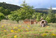 Saint-Saturnin-Les-Apt / Discover the village of Saint-Saturnin-Les-Apt,  Luberon,  Provence , France