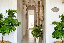 Entrance halls and front doors / by Daniela Bemelman
