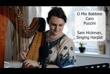 My work / My work as a singing harpist
