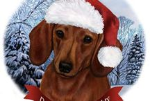 A Doxie Christmas! / Everything doxie and Christmas!