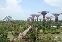 Singapore / Stories and travel information at www.expatexplorers.org