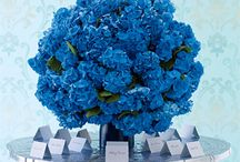 Blue ~ my favorite Color