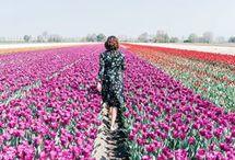 Holland / Netherlands/ Nederland / Foedsie verzamelt beetje bij beetje de leukste plekjes van Nederland. Van toffe hotspots, unieke overnachtingen tot complete city guides. Lees alle tips op Foedsie.