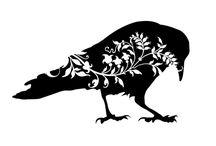 Corvids & Black Birds. / by Rebecca Gerondale