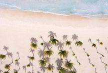 Beaches / Come and enjoy the best hotels from Barceló Hotel Group at the most amazing beaches from all over the world