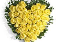 Mumbai Online Flowers Shop