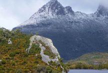 Tasmania mania
