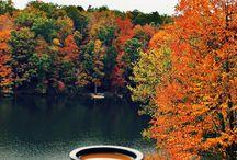 autumn!!!