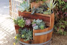 Seasonal Containers