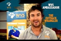 WVS Ambassador The Outback Wrangler / WVS ambassador and National Geographic Channel personality, Matt Wright, the Outback Wrangler. Chopper pilot and animal expert, Matthew Wright has spent his life in the great outdoors drawn to creatures that most of us would run away from. Raised in the wilds of Papua New Guinea and the Australian outback, Matt became comfortable with wildlife, including deadly snakes, spiders and sharks, at a young age. Matt Wright is the perfect ambassador for WVS.