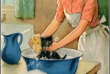 Vintage Cat Art / by Annie Murray