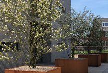 Zakelijke tuinen / Fons Linders Tuinmeesters   Verschillende creatieve creaties zakelijke tuinen
