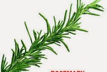 Food on Friday: Rosemary / If you would like to add a dish using rosemary to this collection please just hop on over to http://caroleschatter.blogspot.co.nz/2014/09/rosemary-recipe-links-Food-Friday.html or click through the first pin.  Cheers