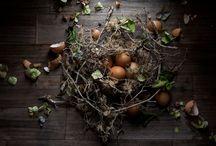 Easter   Pâques / by Voir Ci-Contre