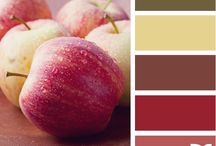 Colour Recipes / by Virginia Worden