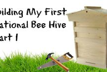 Bee Keeping / Anything to do with Bee Keeping