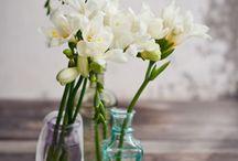 Blumensorten