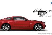 Mustang / Mustang pics