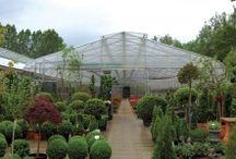 greenhouse construction & type