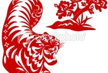 tiger & lion