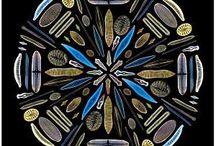 MIKROSKOPIE KALEIDOSCOPIE!!!! / Kaleidoscope art / by Kim Lorrine Harris