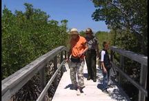 Kids learn about National Parks! / Learn how to become a Jr. Park Ranger!