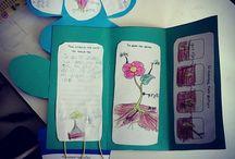Lapbook - Τα φυτά