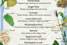 Herbs, Oils & Incenses