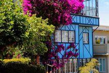 {Travel} San Francisco