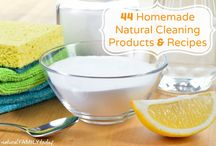 Healthy Home / A collection of recipes and ideas for natural cleaning, organic skincare products and more!