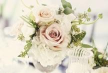 Wedding / by Gina Mortensen