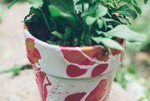 pot plant art