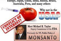 GMO=DEADLY / by L Leonard